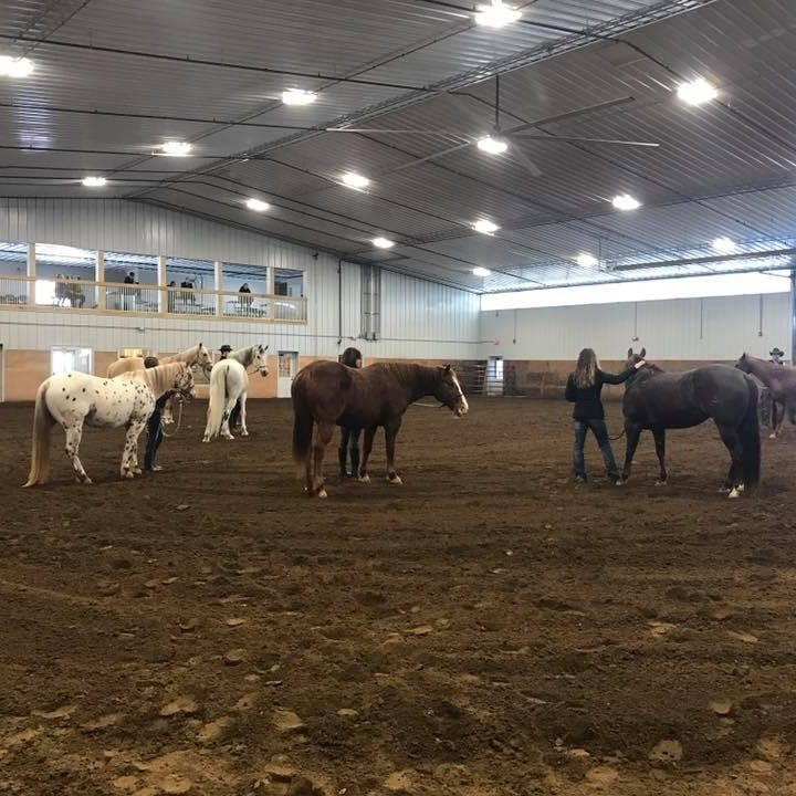 Tour Our Indoor Riding Arena – Leashes & Leads Equine Park